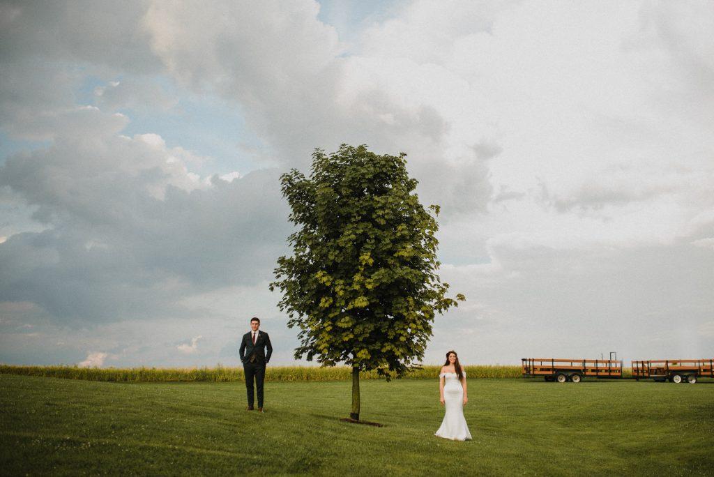 dyment's farm wedding - bride and groom portrait near tree